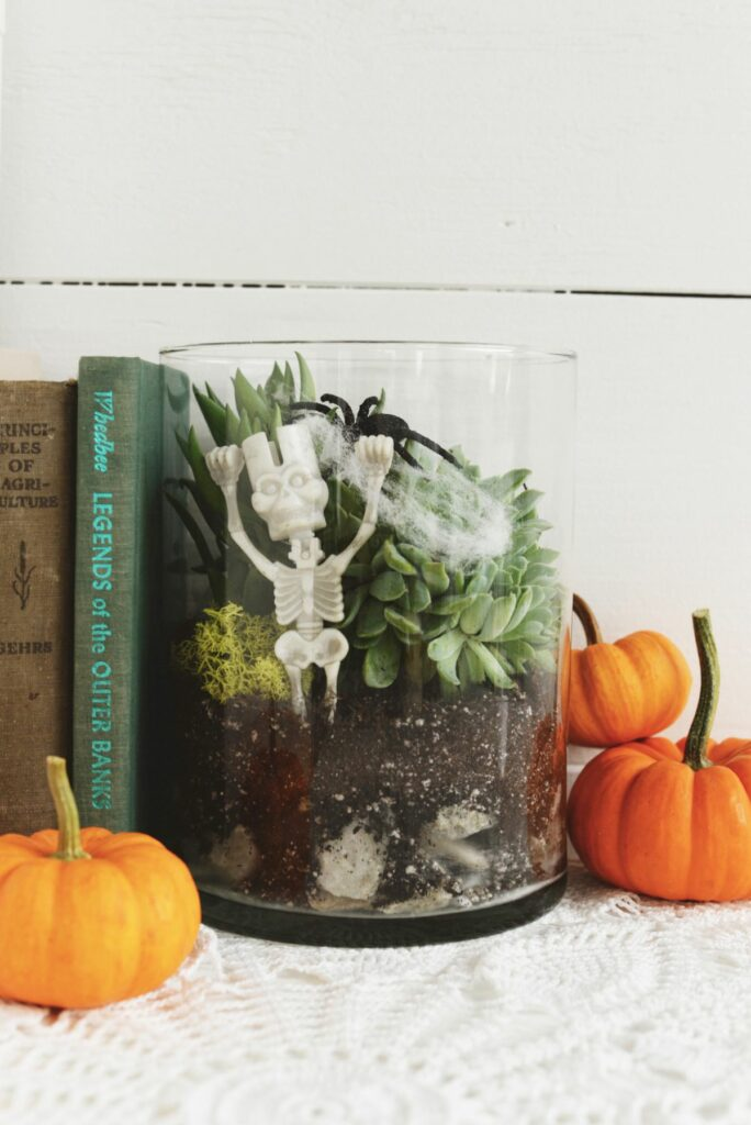 Halloween Spooky Terrarium for Decor