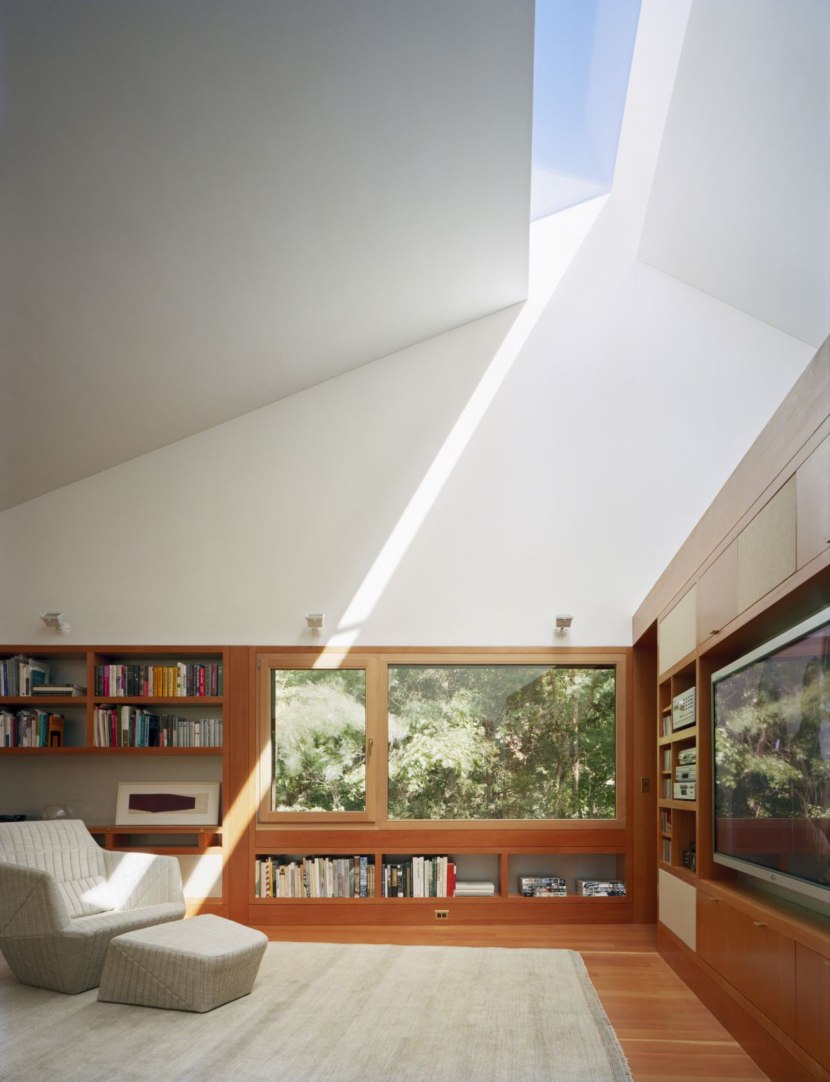 Writing Studio into the Forest Skylight