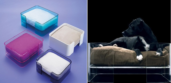 Acrylic bed for dogs