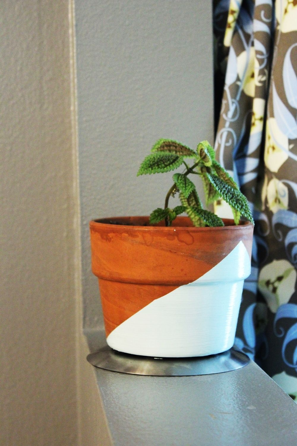DIY Geometric Painted Planter