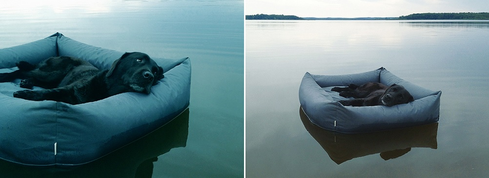 Floating dog bed