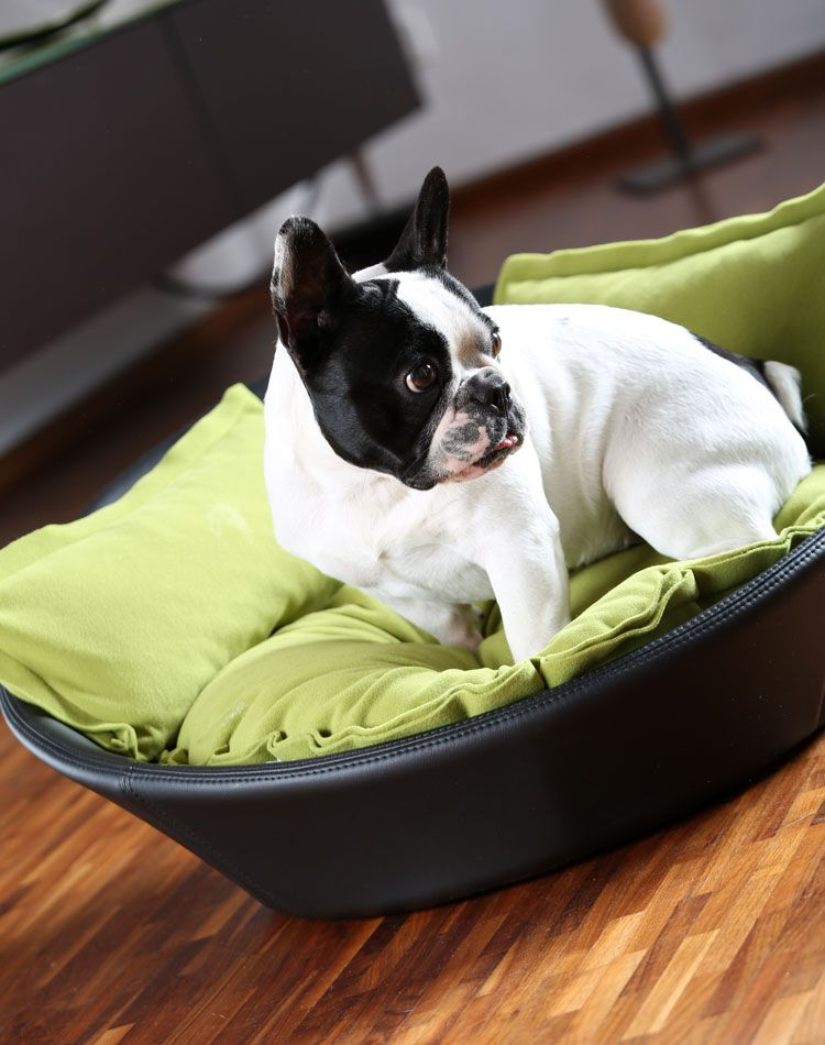 MILA puppy bed out of faux leather