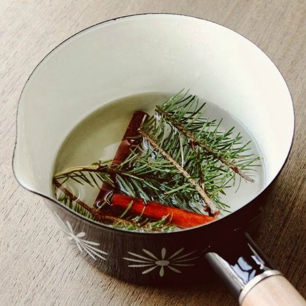 Pine cinnamon simmer
