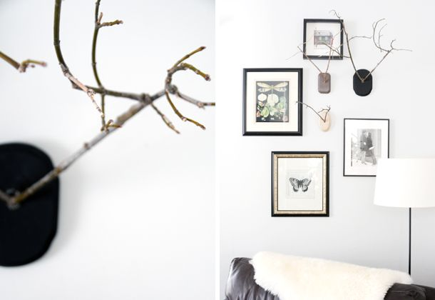 Twig antlers gallery wall