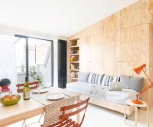 Small Flat Takes Advantage Of Reduced Space In A Big Way