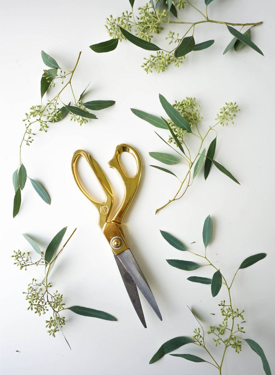 Eucalyptus Candle Wreath Cut The Seeded