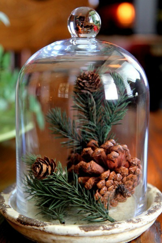 Evergreen terrarium additions