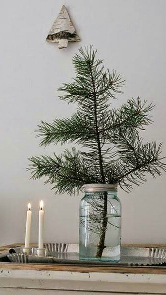 Tiny jar tree