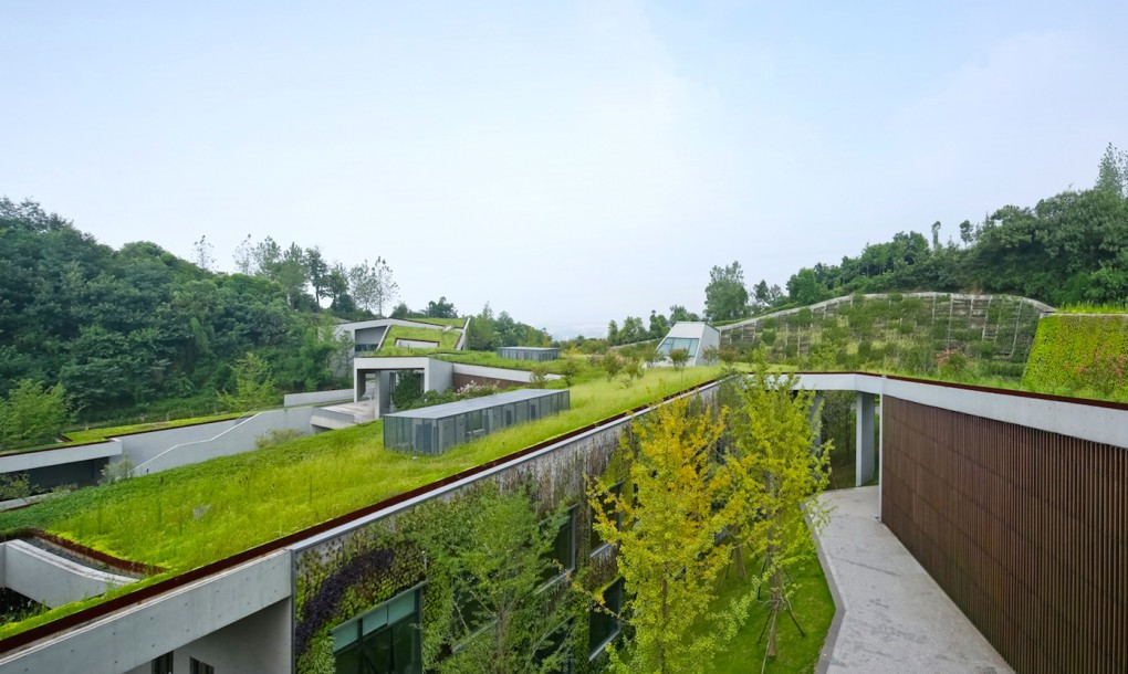 Concrete and grass for Chongqing Taoyuanju Community Cente