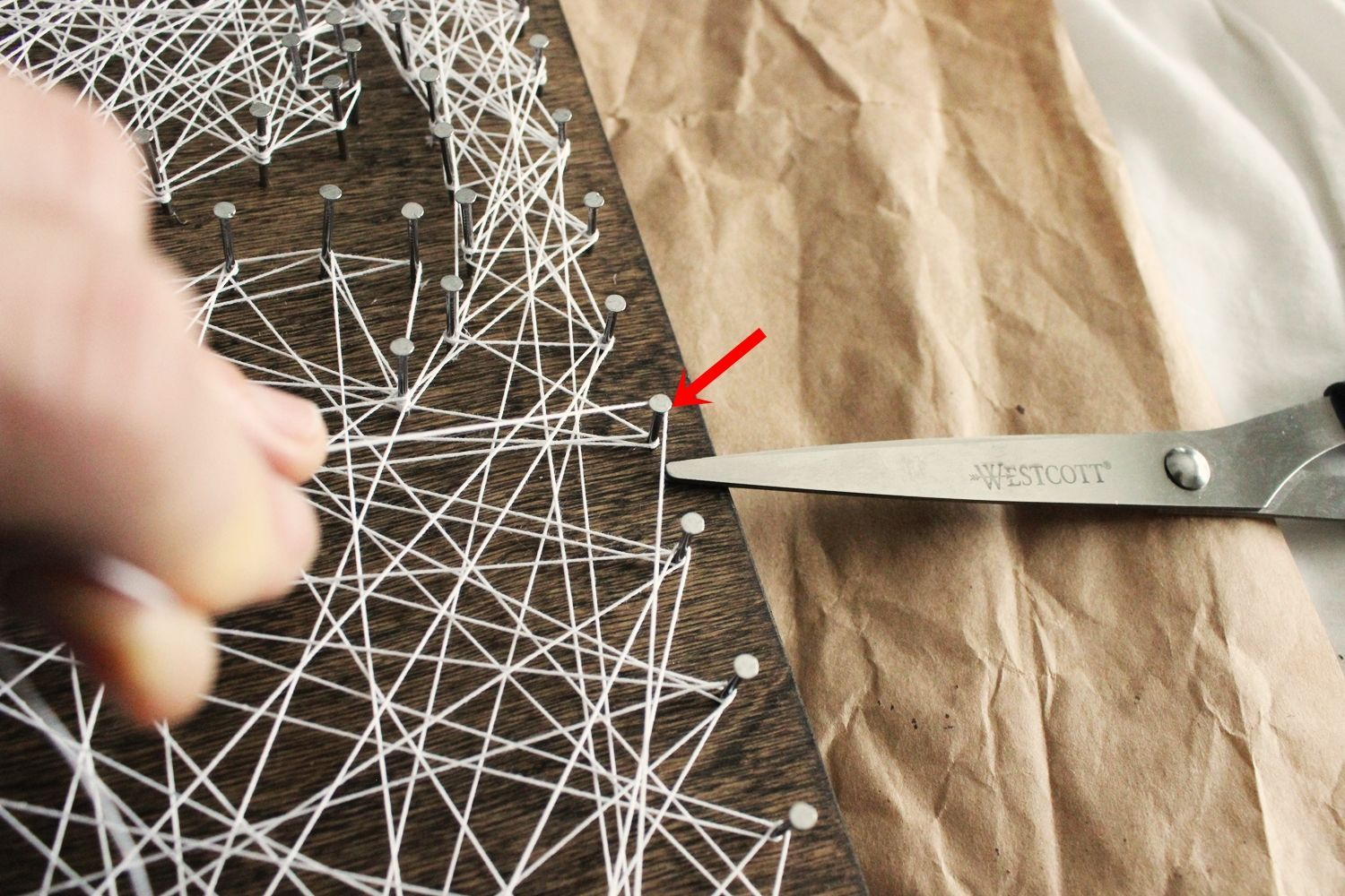 DIY String Art Tree - blank space