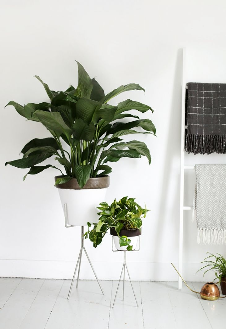DIY leather trimmed planters
