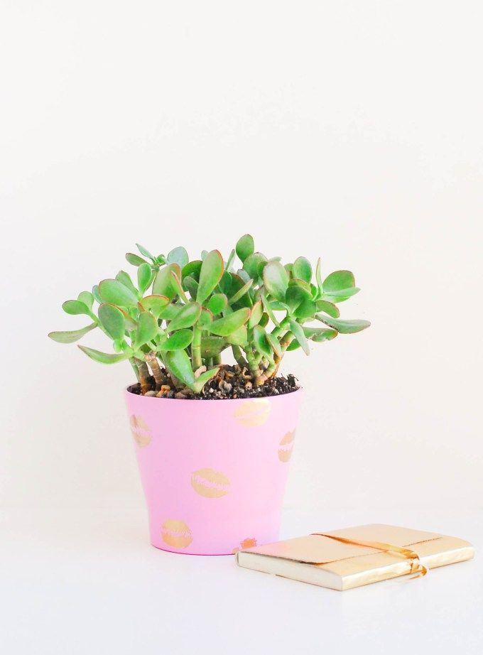 DIY pucker planters