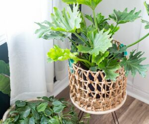22 DIY Plant Stands That Let You Explore Your Creativity