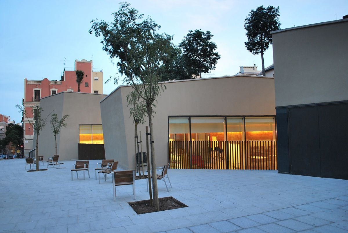 Joan Maragall Library Trees on Roof