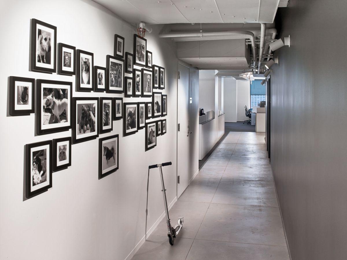 LinkedIn New York Office pet wall
