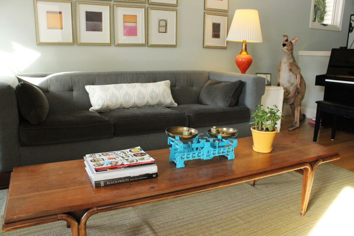 Mid-century modern vibe coffee table