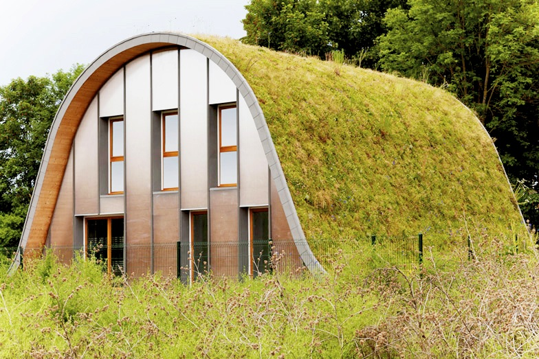 Patrick Nadeau Green-Roofed Wave Home