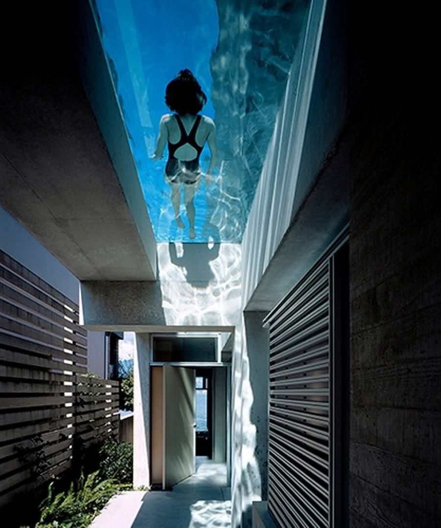 See-Through Swimming Pools Reveal A World Full Of Surprises
