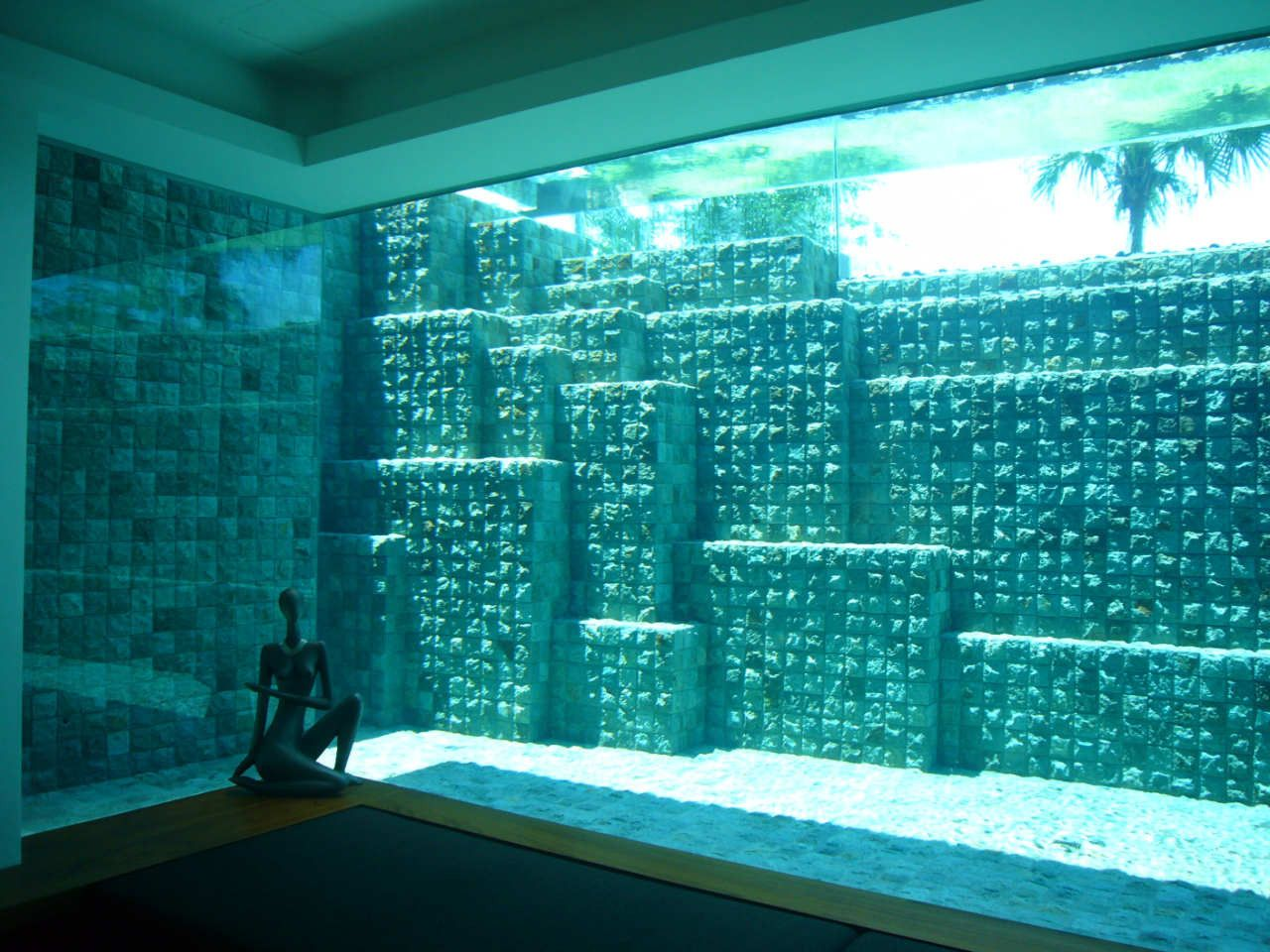 See through swimming pools reveal a world full of surprises for Swimming pool design jobs