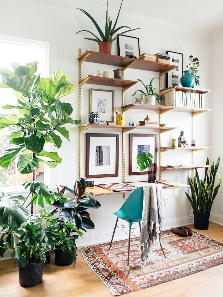 add plants for your workspace area