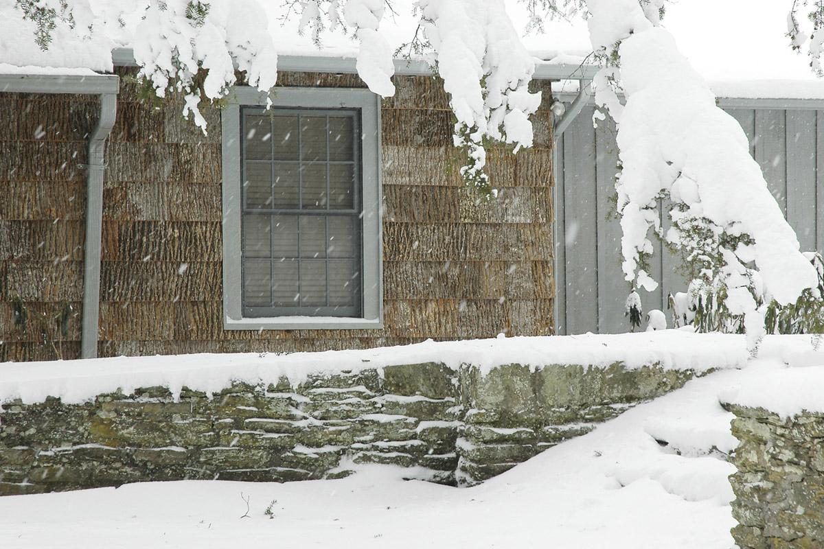 Bark For exteriors
