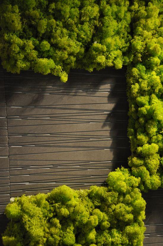 Benetti stone moss