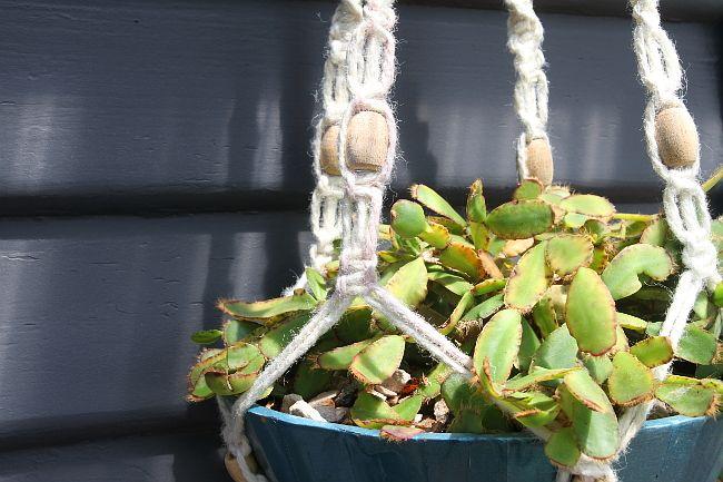 DIY Bohemian Macrame Plant Hanger - closer basket