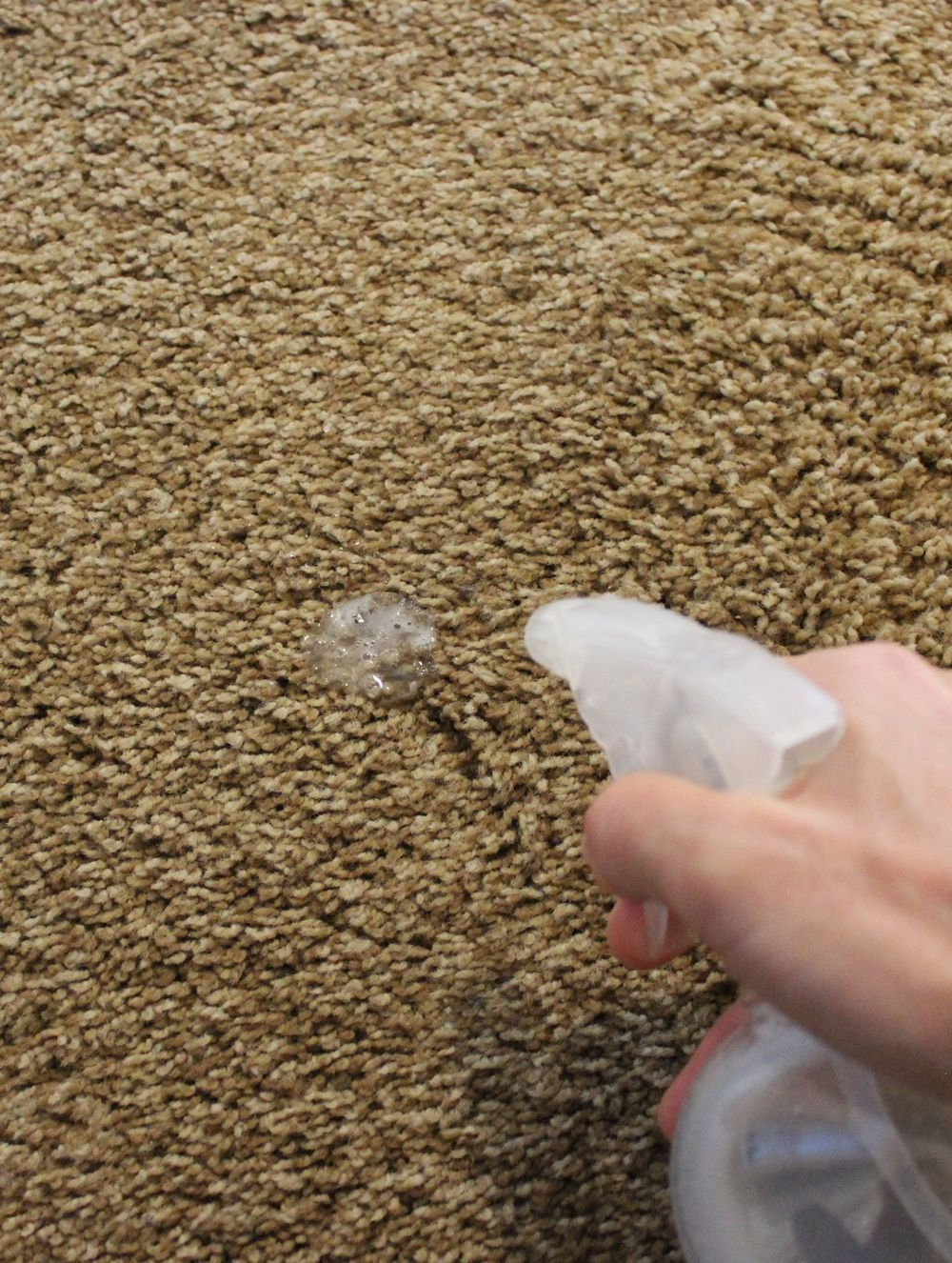 DIY Carpet Cleaner - spot cleaning
