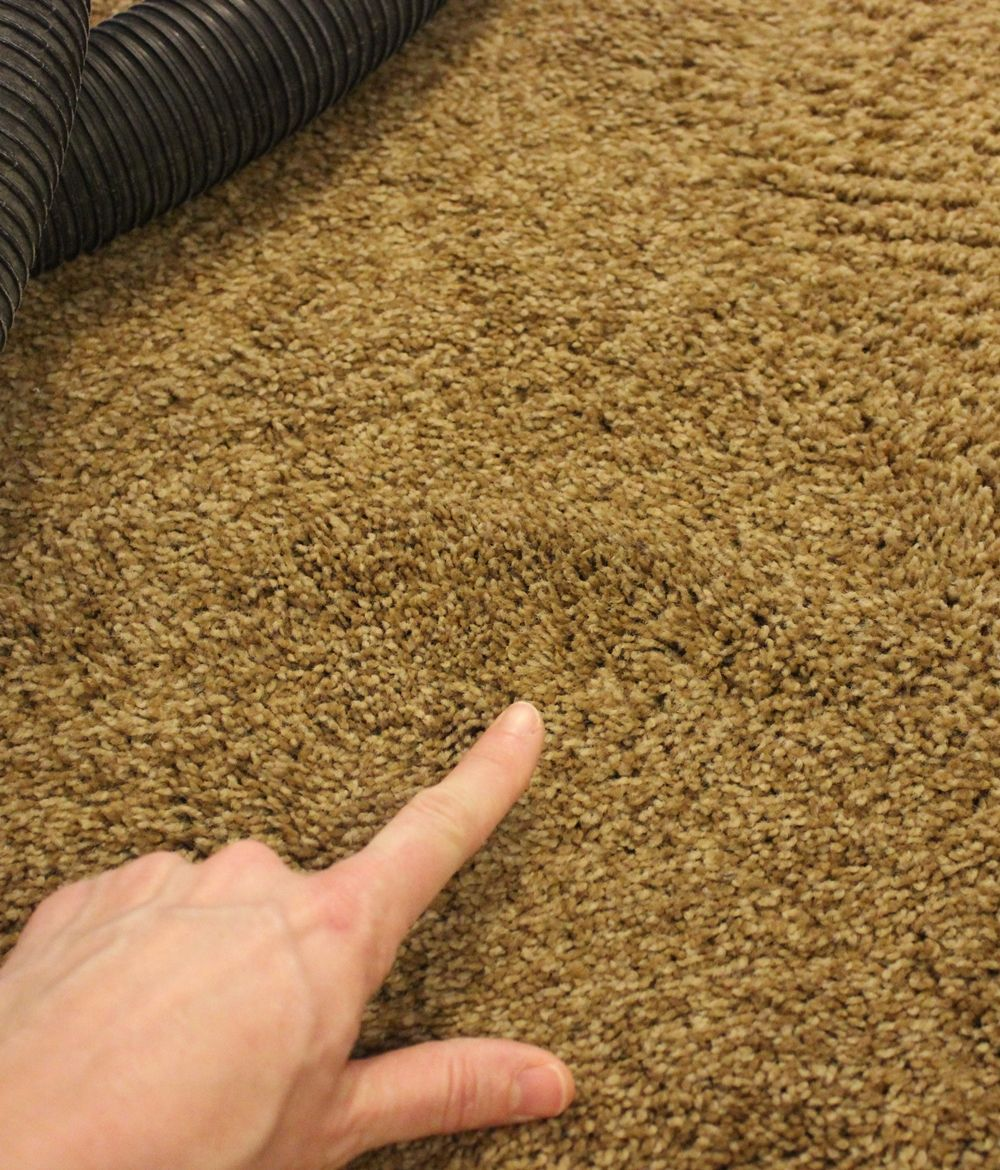 DIY Carpet Cleaner- stain was treatable