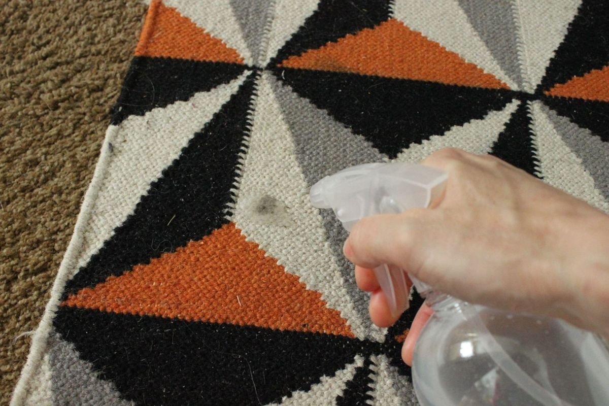 DIY Carpet Cleaner - stain
