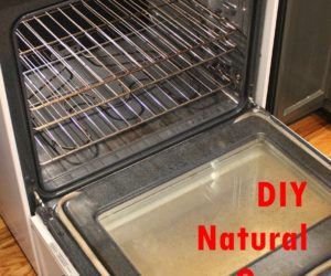 DIY Natural Oven Cleaner