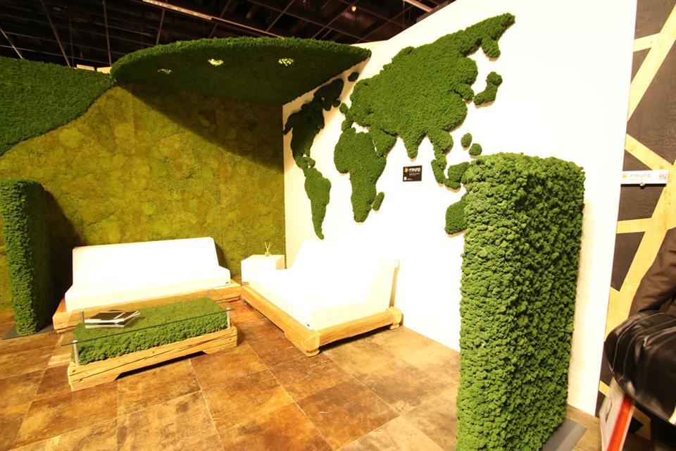 Freund uses real mosses and plants for our green wall elements corner