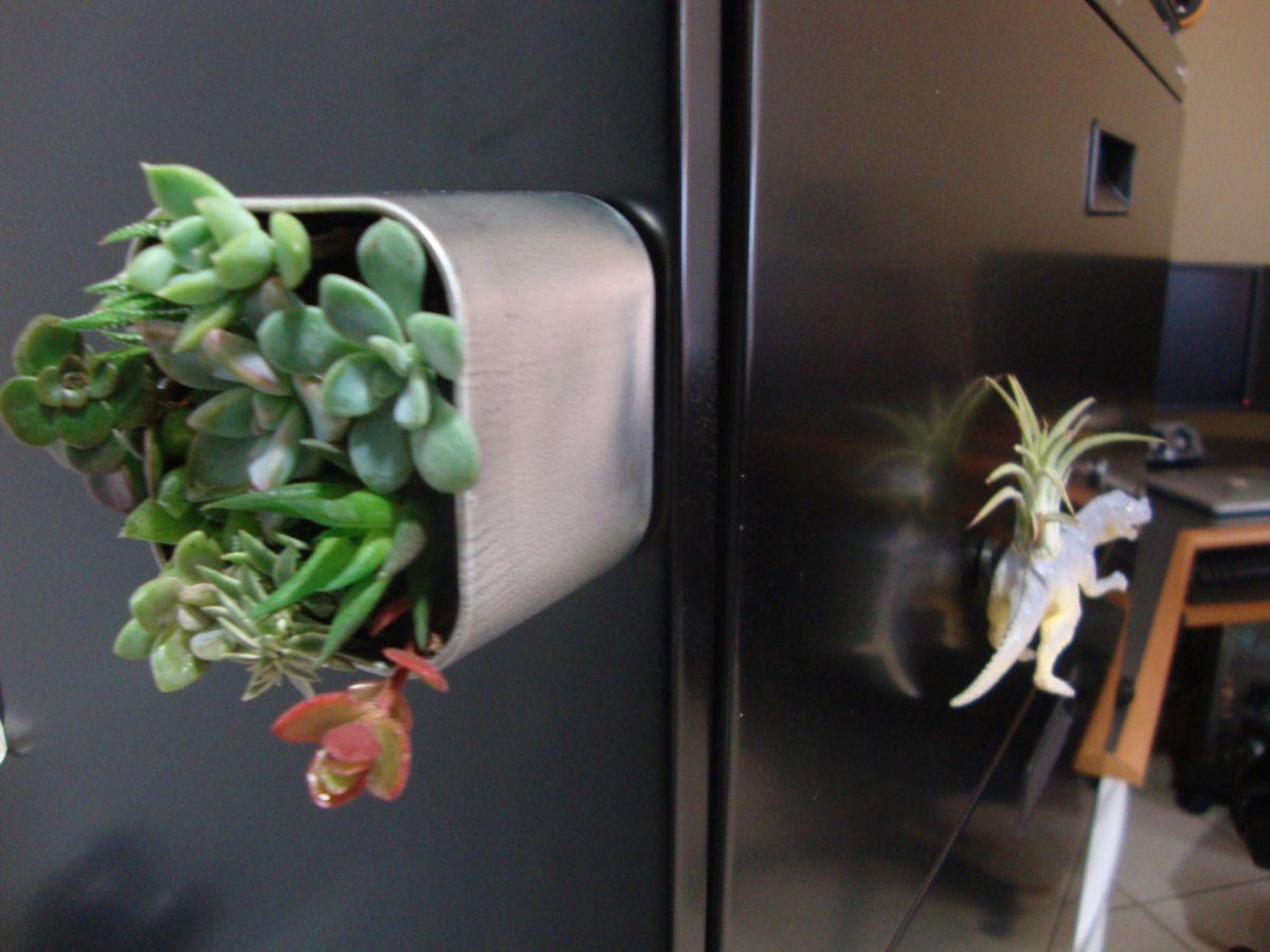 Mini Succulent Garden Magnet