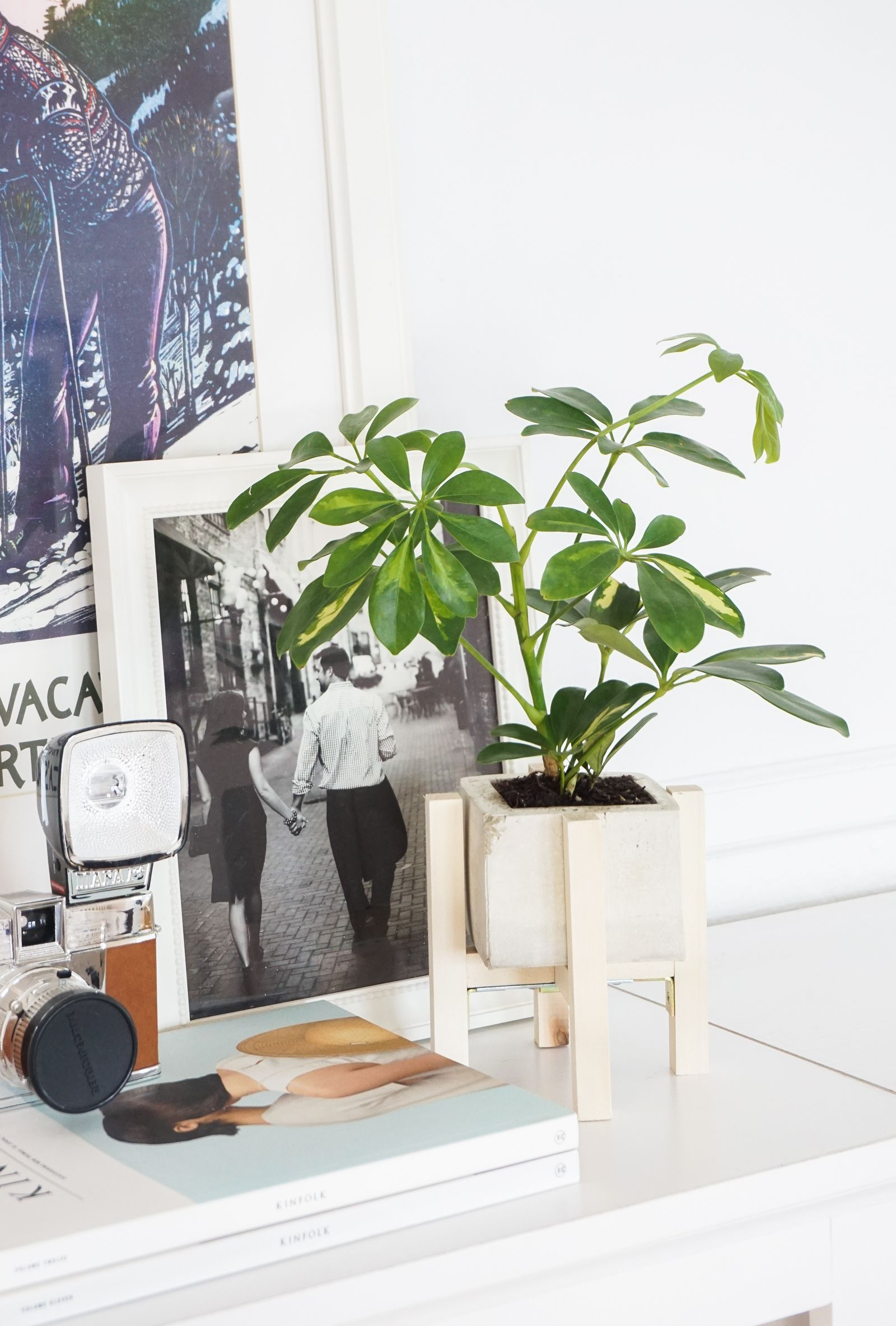 DIY Concrete + Wood Planter Stand