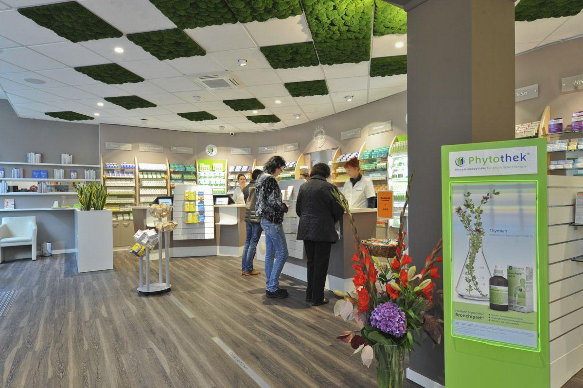 Pharmacy Ceiling Moss