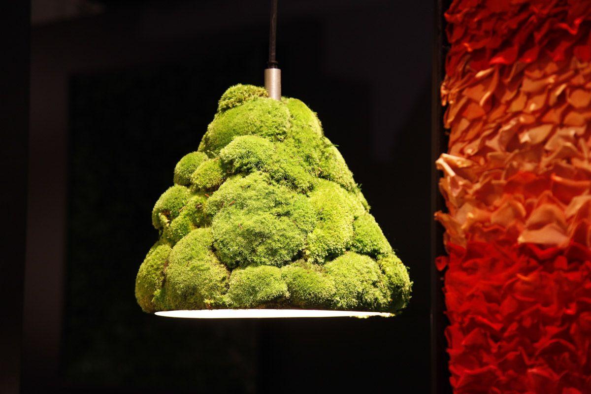 Rosemarie Schuls Moss lamp
