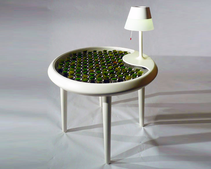 biophotovoltaic moss table