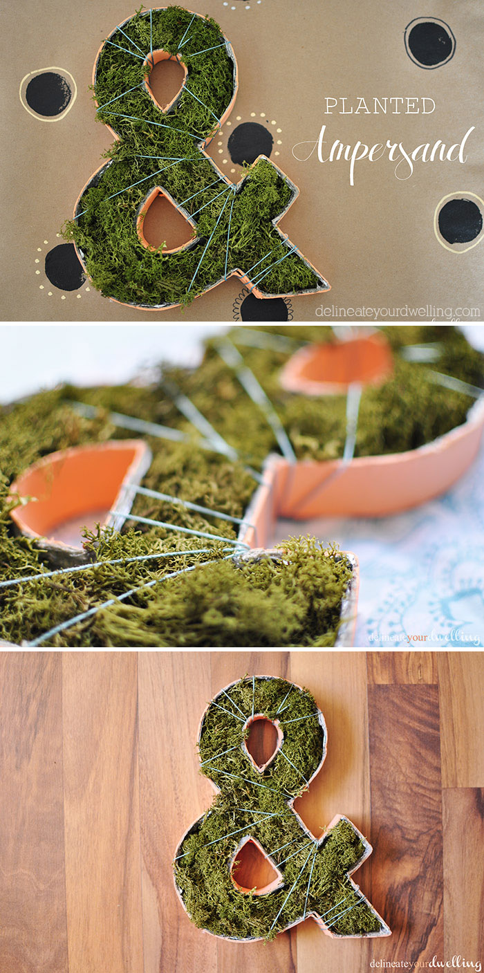 make an ampersand moss planter