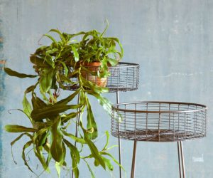 Nice ... 13 Plant Stands To Give Your Houseplants A Home Good Looking