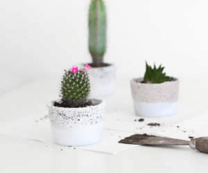 Attractive ... Small Ikea Glass Containers Into Planters Design