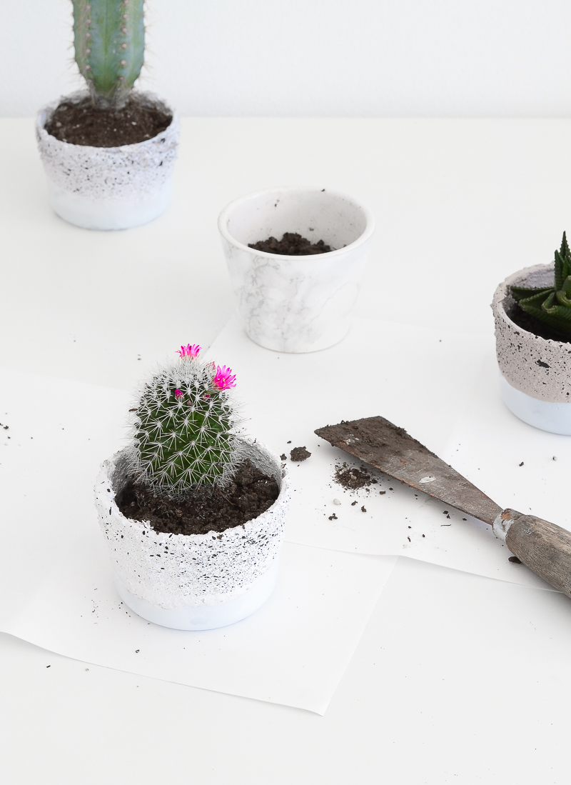 Concrete planters - step by step 8