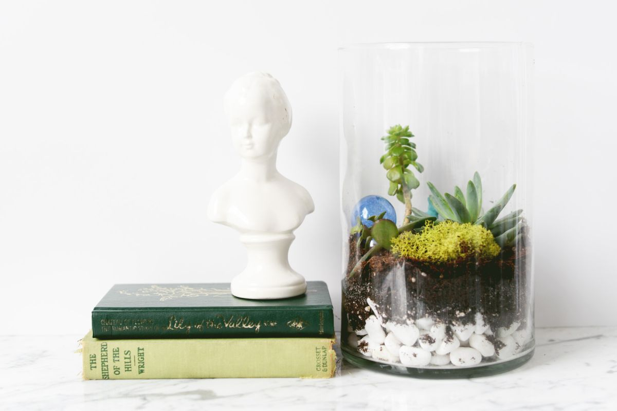 DIY Oversized Terrarium books