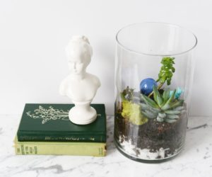 How To Make A Terrarium – Oversized Design