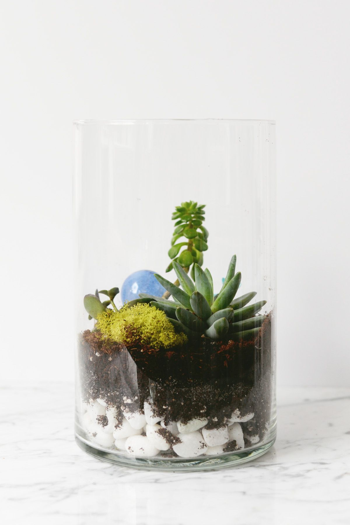 DIY Oversized Terrarium finished