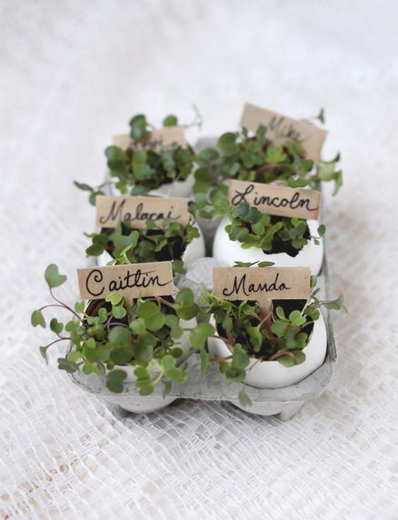 Mini planters place cards