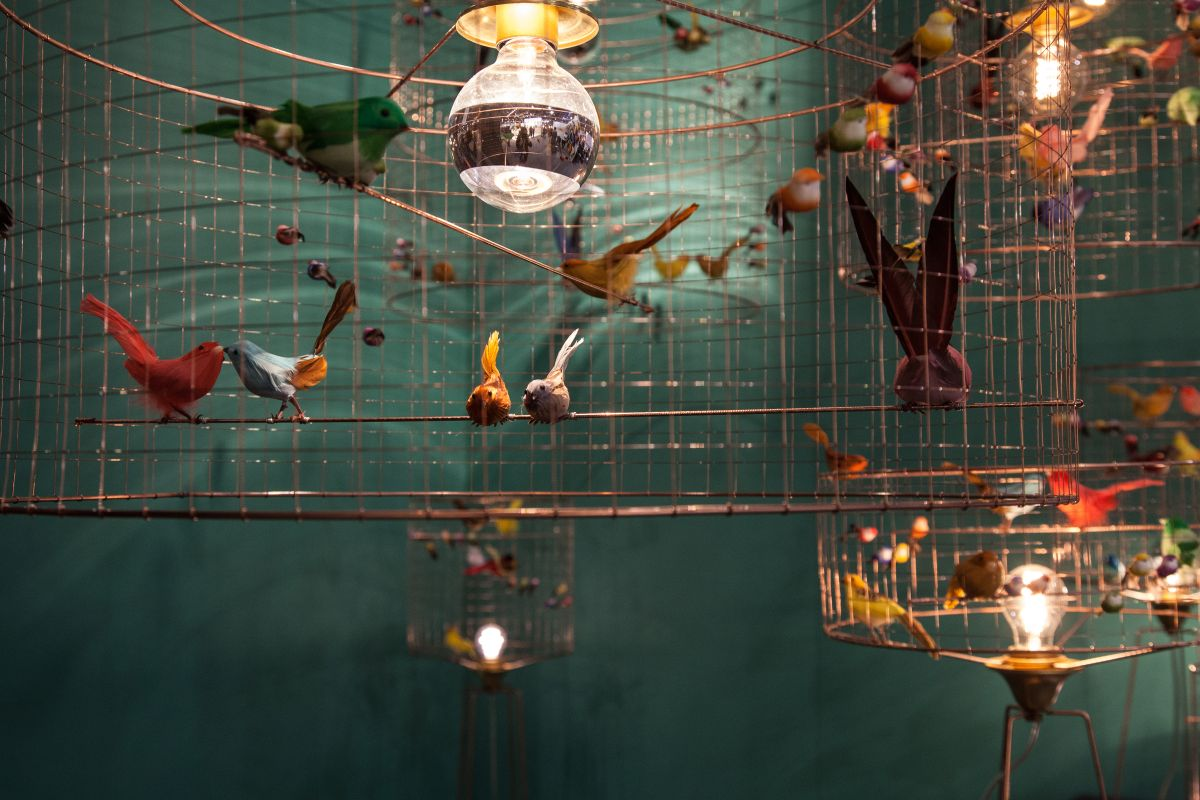 challieres bird cages
