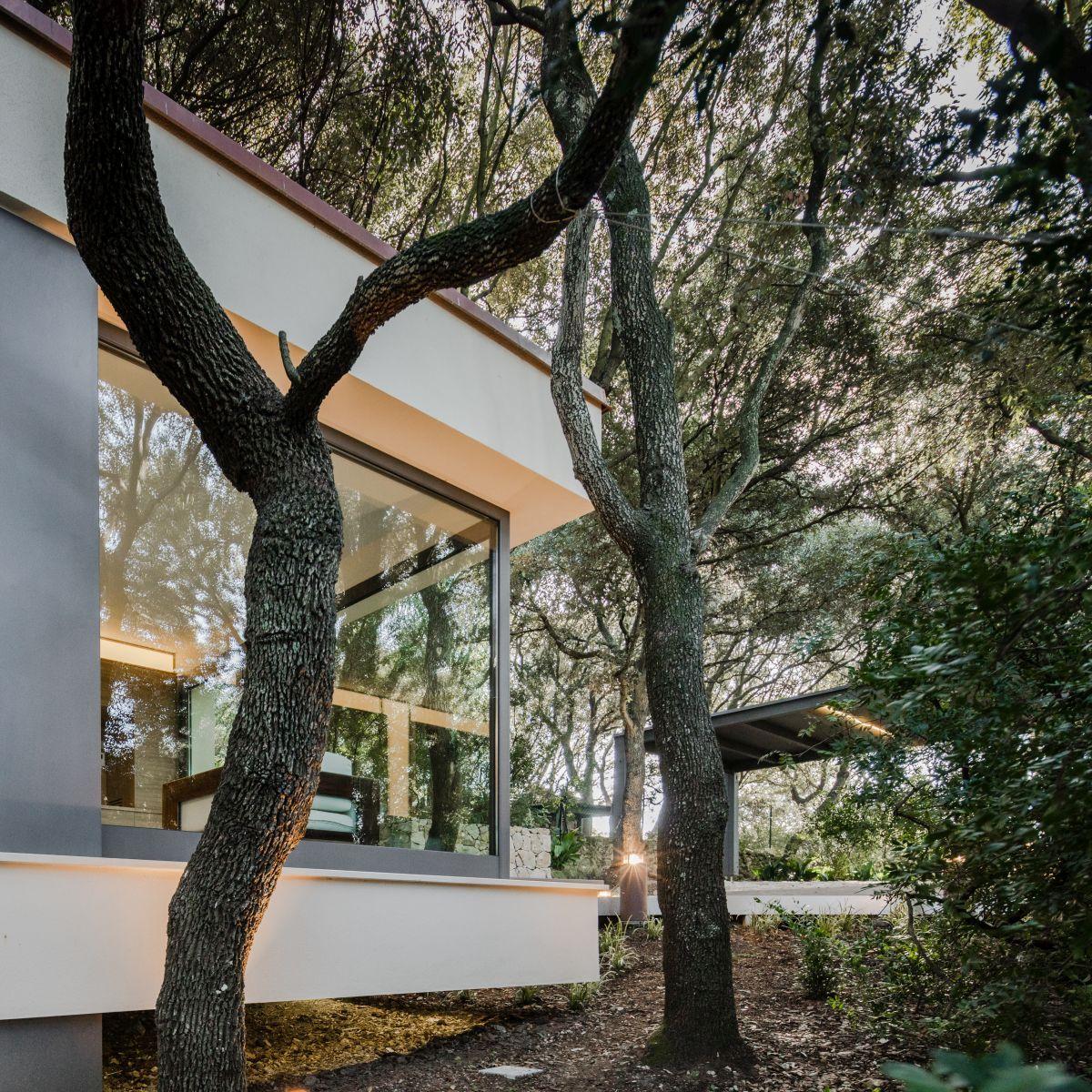 Casa nel Bosco extension for main house
