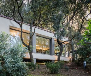 Modern House In The Woods Guarded By The Oak Trees