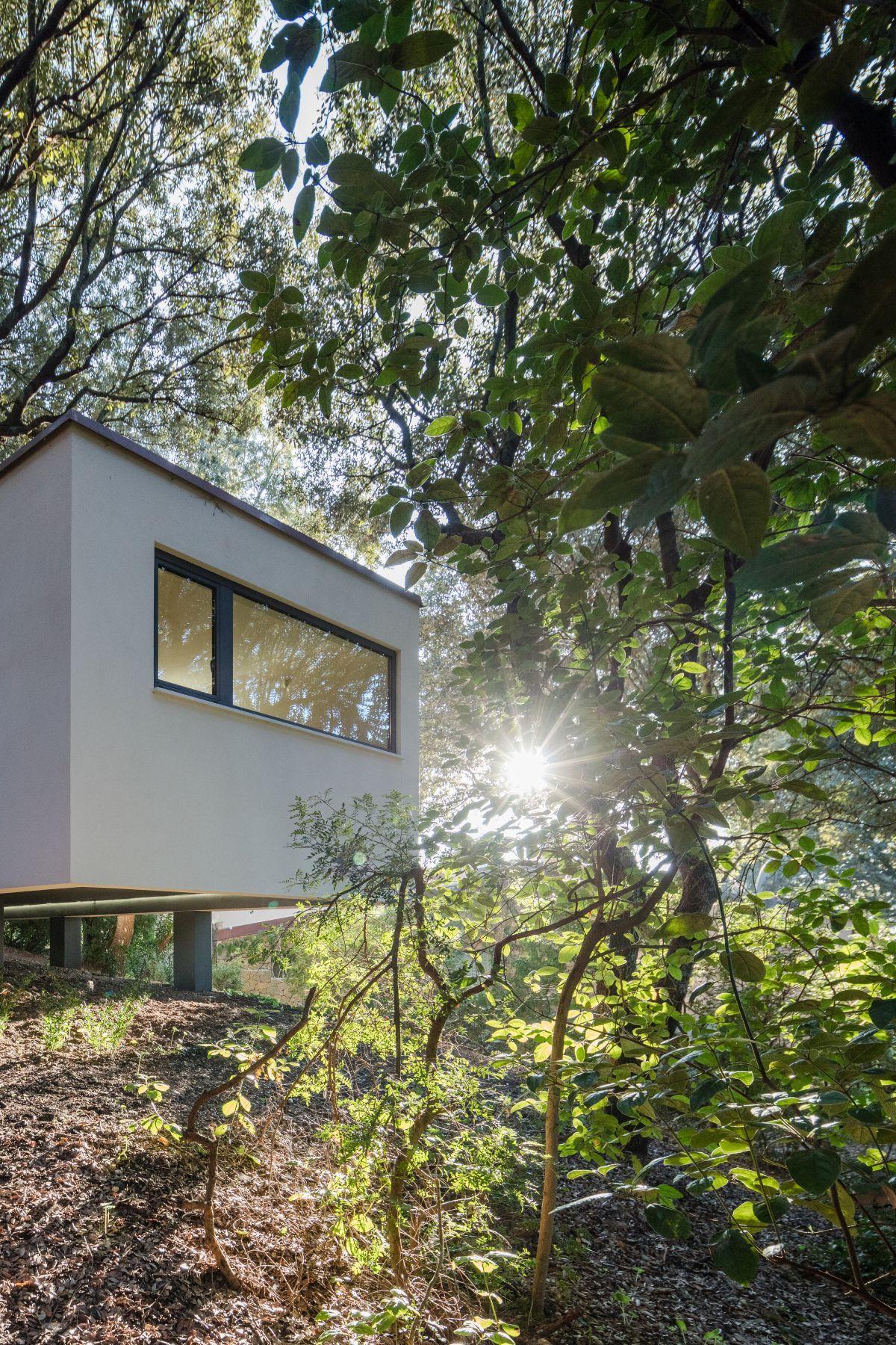 Casa nel Bosco narrow side openings