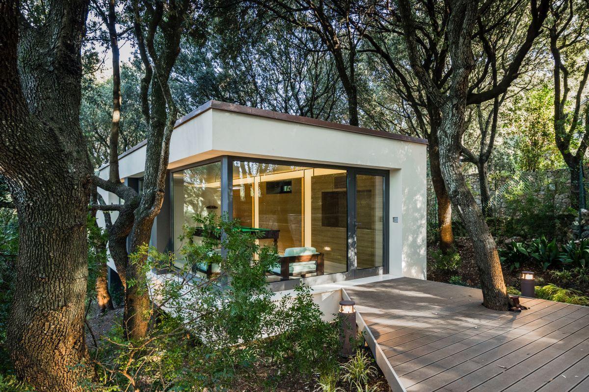 Casa nel Bosco suspended deck pierced by tree